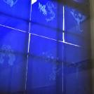 上野千紗 個展 「別々の場所で、同じタイミングで眠る」