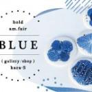 hold am. fair BLUE