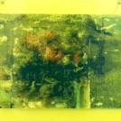 大石 茉莉香 個展 「36億年の彼」