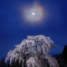 きつのえいじ 写真展「雪月花 和の心」