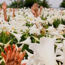 山城知佳子『土の人』『あなたをくぐり抜けて―海底でなびく 土底でひびく あなたのカラダを くぐり抜けて―』